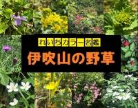 Photo_20200524160501